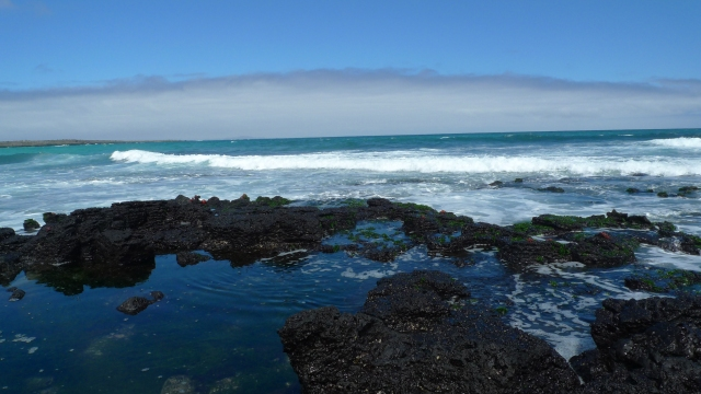 Rocky Lava Tide Pool