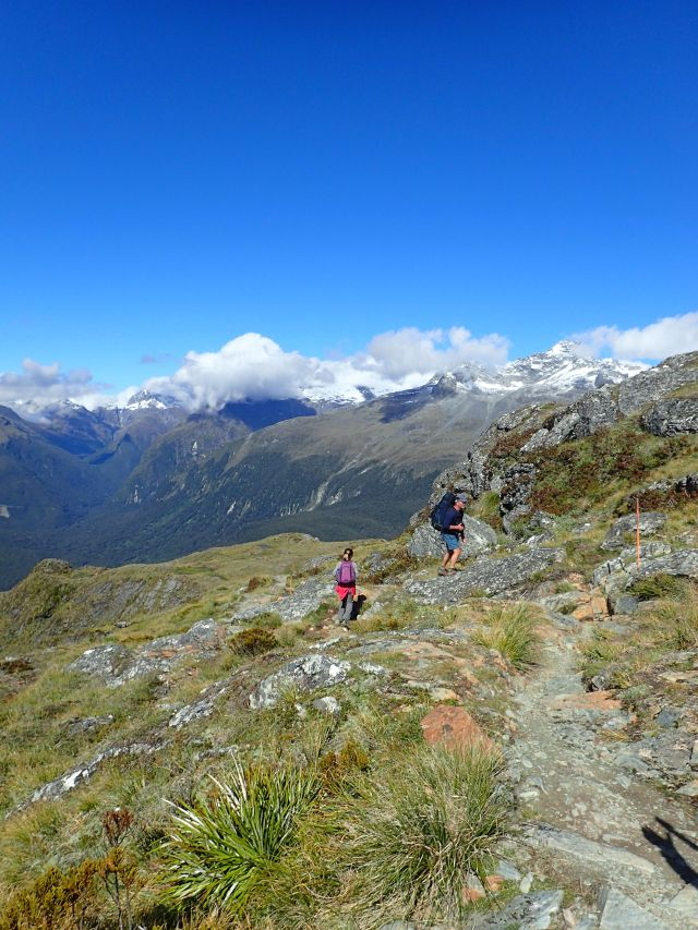 High on the Routeburn