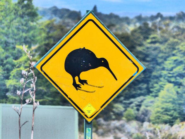 Land of the Kiwi