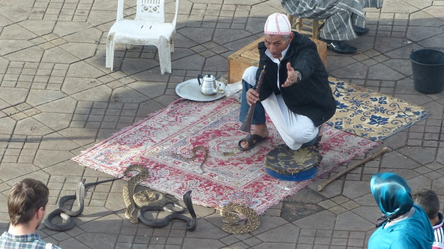 Snake-charmer in Marrakech